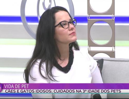 Coordenadora de Veterinária orienta sobre a terceira idade dos pets, na TV Tarobá